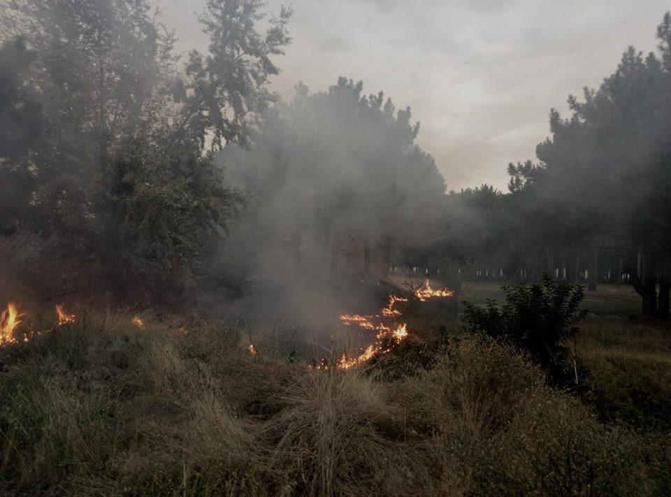 Рятувальники ліквідували пожежу у Каховці, фото-1
