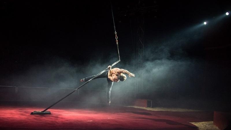 Цирковое чудо: как жители Херсона в Италии побывали, фото-5