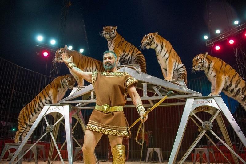 Цирковое чудо: как жители Херсона в Италии побывали, фото-4