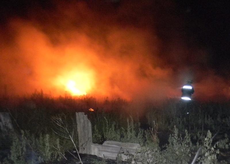 В останній день літа вогнеборці традиційно гасили пожежі в екосистемах, фото-1
