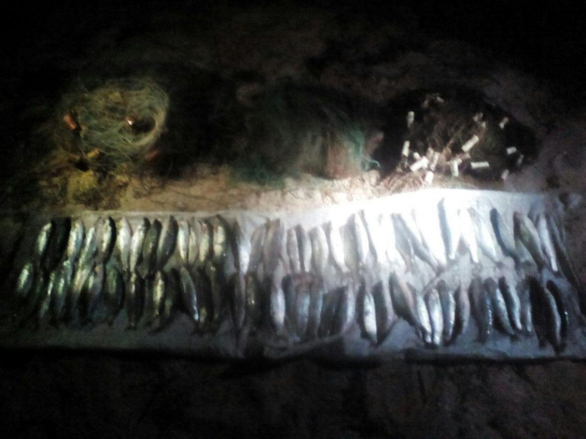 Херсонські прикордонники зупинили місцевого жителя з незаконним уловом на 40 тис грн, фото-1