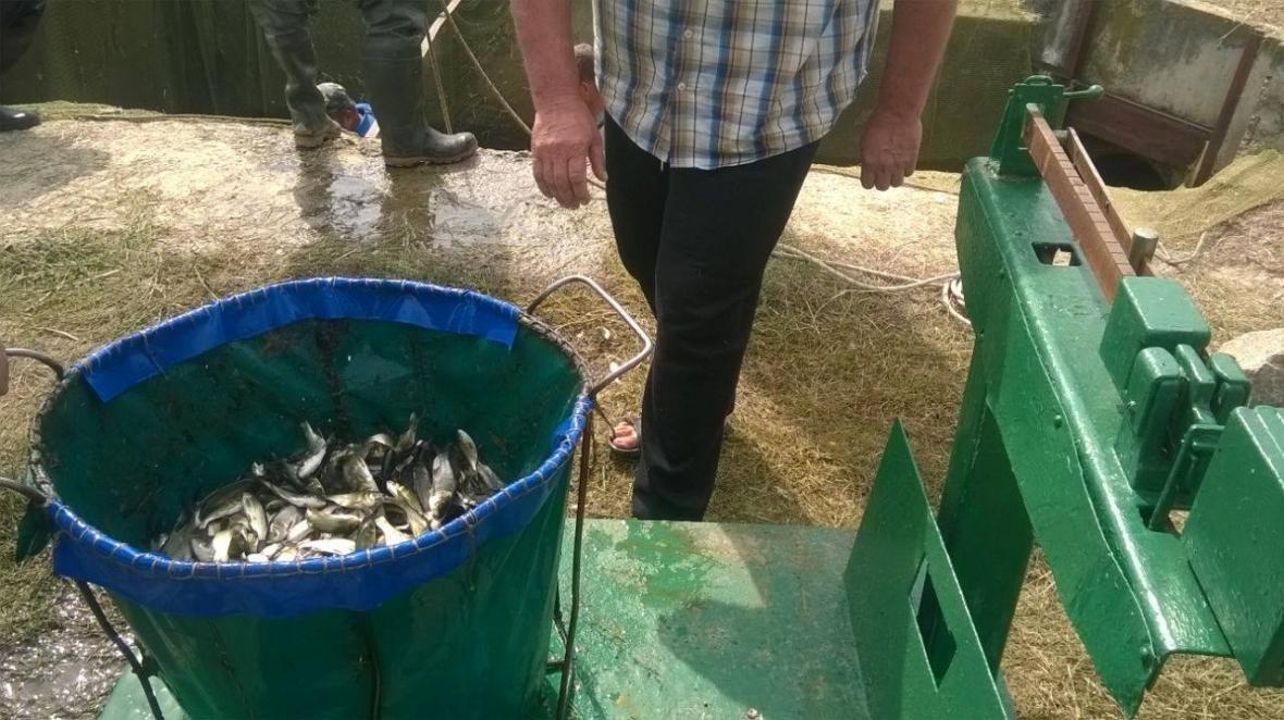 На Херсонщині працюють над розвитком водних ресурсів, фото-1