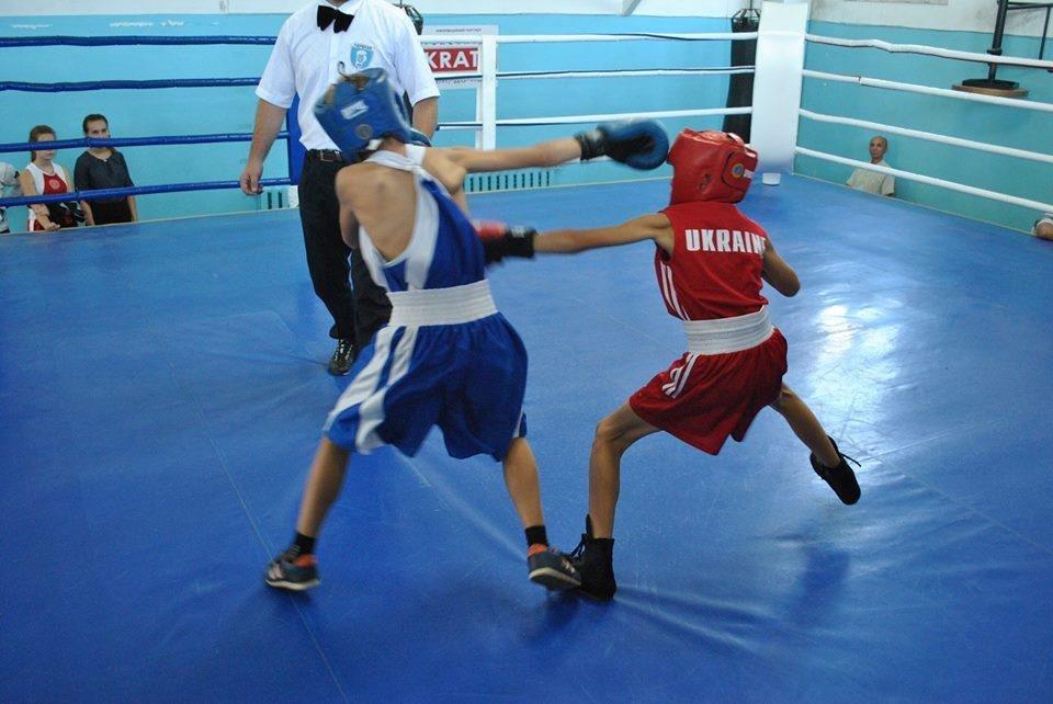 В Херсоне завершился Кубок области по боксу, фото-1