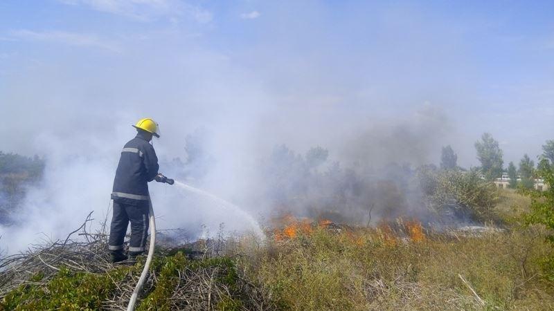 За минулу добу вогнеборці 4 рази гасили пожежі в екосистемах, фото-1
