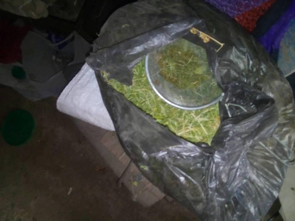 У жителя Нової Каховки вилучили 3 кілограми канабісу та понад півсотні патронів, фото-1