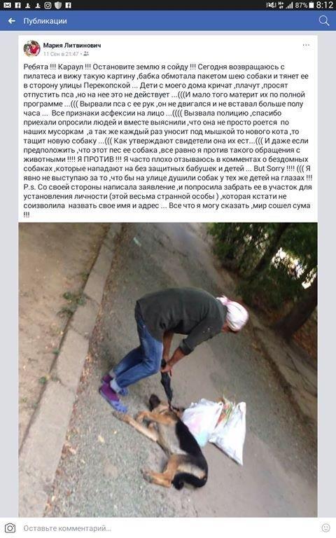 Шокирующая история убийства собак в Херсоне, фото-1