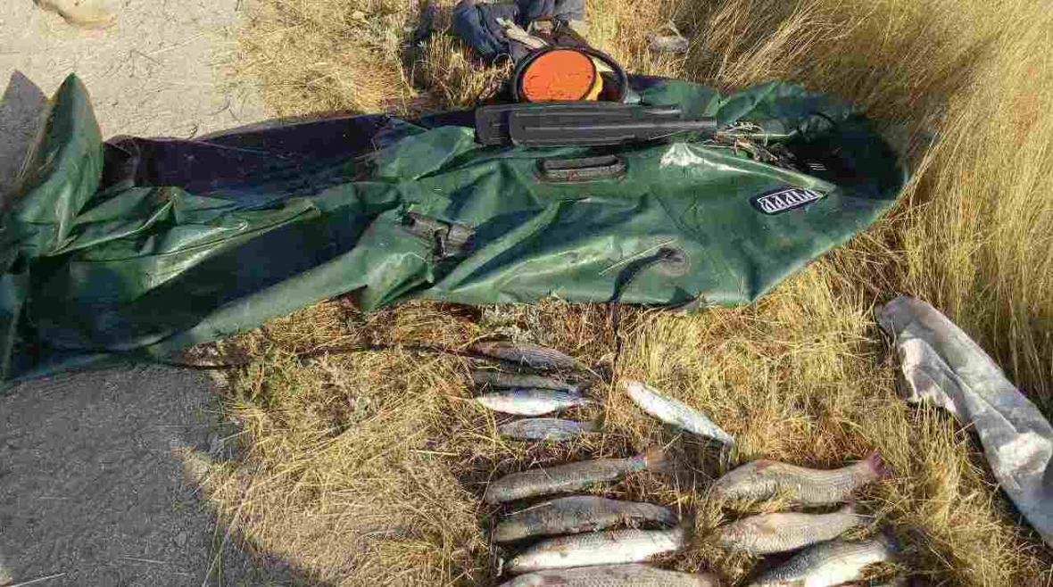 На Херсонщині прикордонники попередили чергову спробу браконьєрства, фото-1