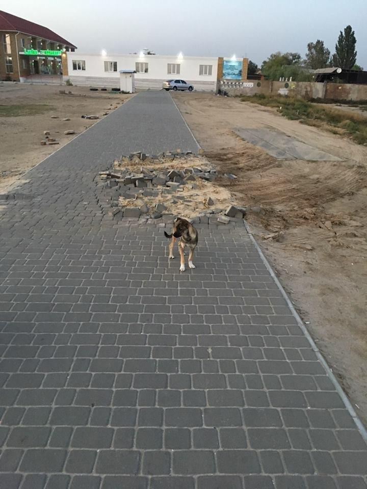 Ломать, не строить: на Херсонщине неизвестные повредили новую пешеходную дорожку, фото-1