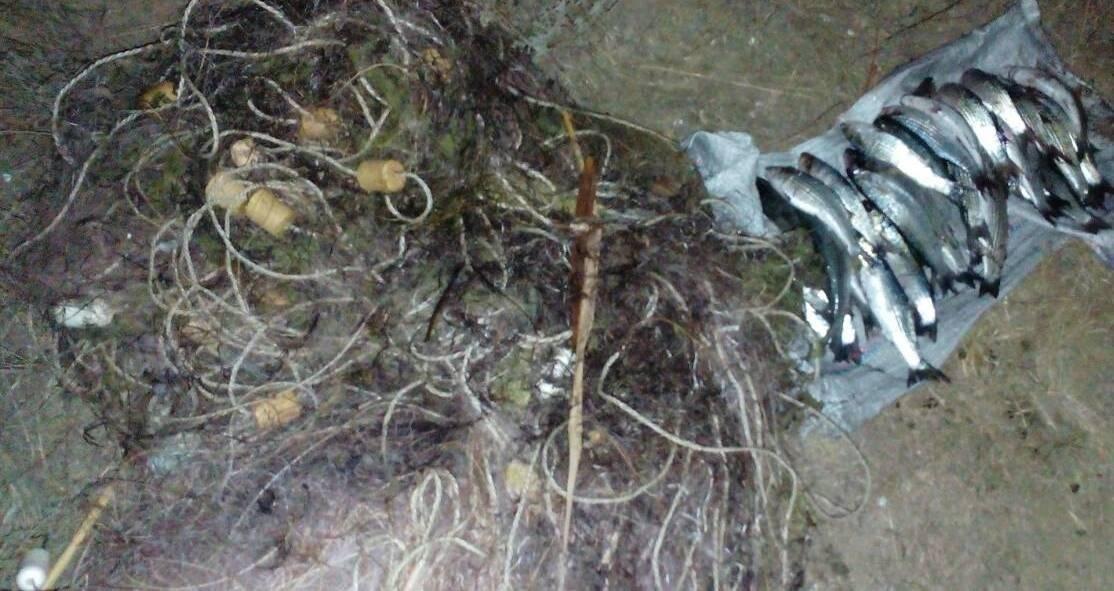 На озері Сиваш прикордонники затримали громадянина, який займався браконьєрством, фото-1