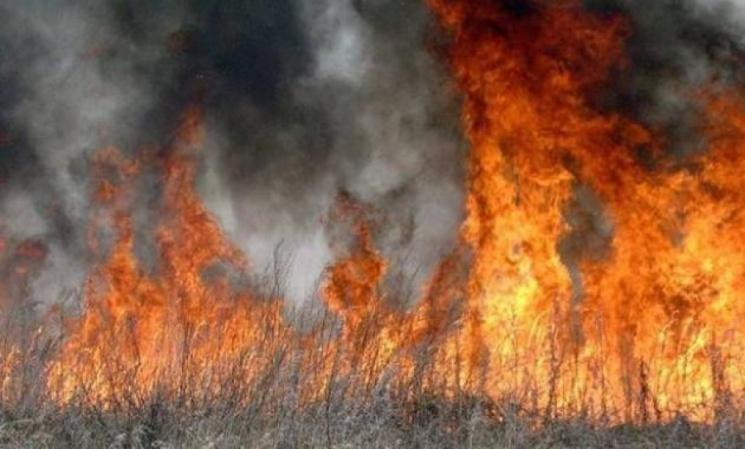 Вогнеборці ліквідовують пожежу сухої трави, фото-1