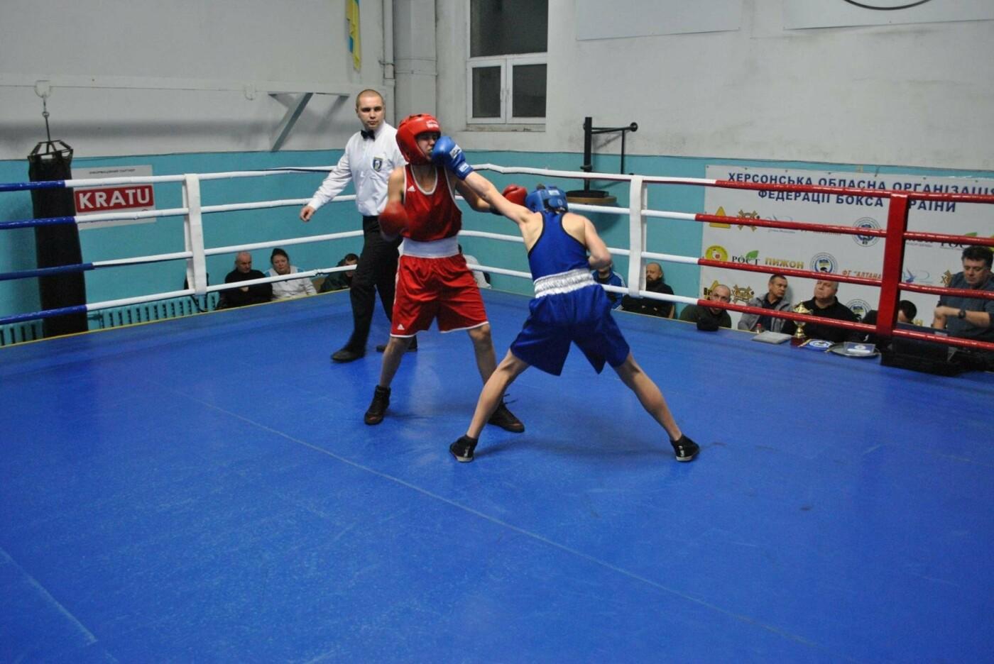 В Херсоне завершился открытый чемпионат области по боксу, фото-1