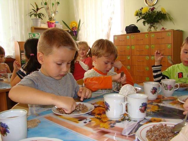 Депутаты Херсонского горсовета могут проверить качество питания в школах и детсадах , фото-1