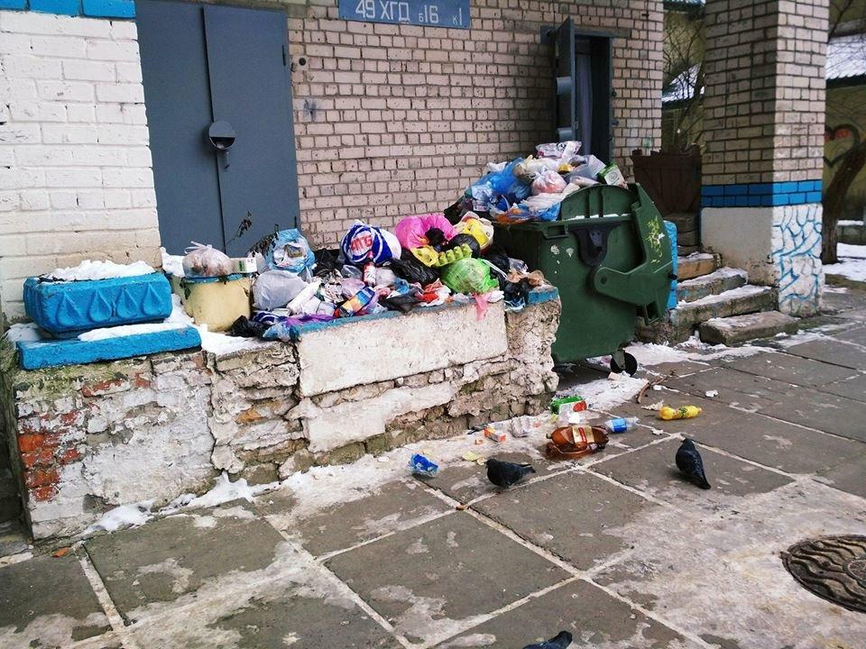 В нескольких районах Херсона прекратили вывозить мусор?, фото-1