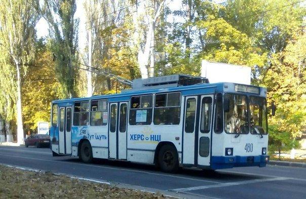 Херсонский общественник проводит опрос о транспортной сети города, фото-1