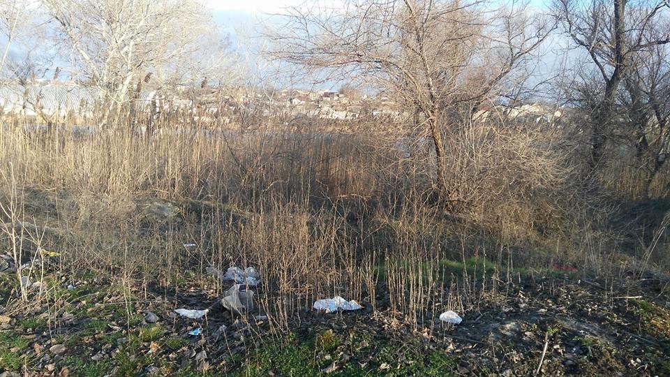 Очередная стихийная свалка в Херсоне (фото), фото-1