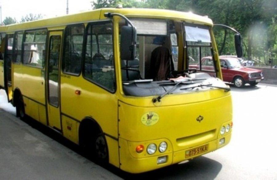 Херсонские коммунальные перевозчики уменьшат закупку нового транспорта , фото-1