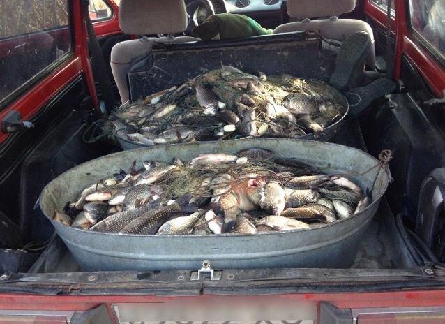 В Голопристанському районі працівники відділення поліції в порту «Херсон» виявили двох браконьєрів, фото-1