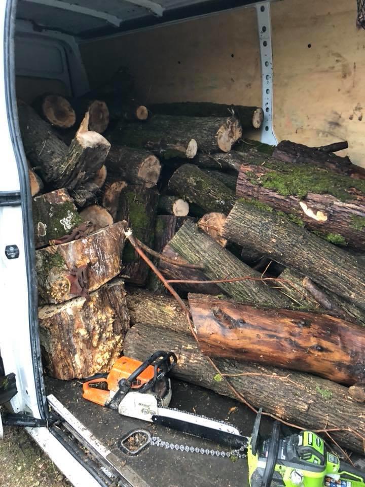 На Херсонщине активисты задержали очередных лесных браконьеров, фото-3