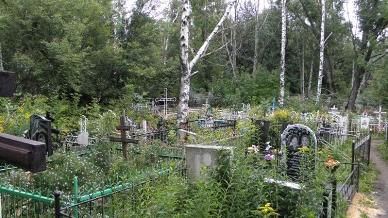 У Новотроїцькому районі поліцейські виявили підозрюваного у крадіжці з цвинтаря, фото-1