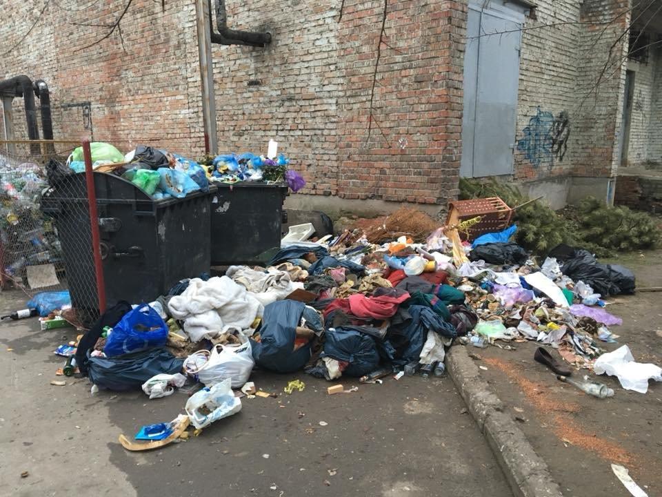 Херсонские дворы утопают в мусоре, фото-1