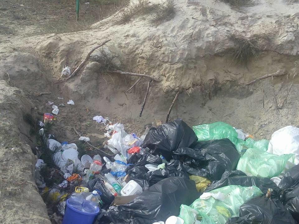 База туризма депутата Херсонского облсовета загрязняет лес, фото-3