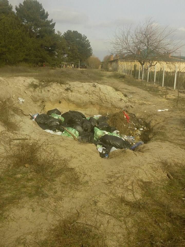 База туризма депутата Херсонского облсовета загрязняет лес, фото-4