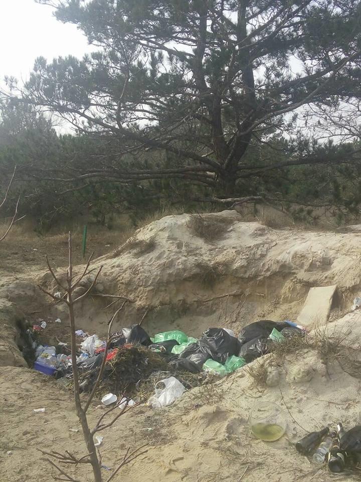 База туризма депутата Херсонского облсовета загрязняет лес, фото-5