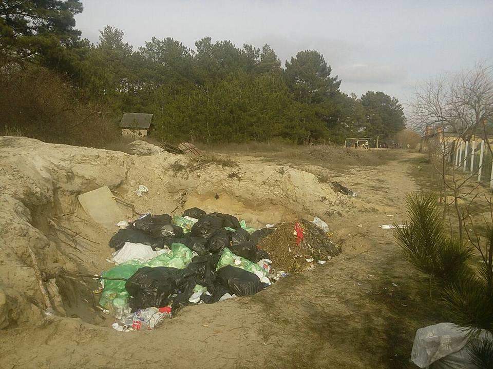 База туризма депутата Херсонского облсовета загрязняет лес, фото-1