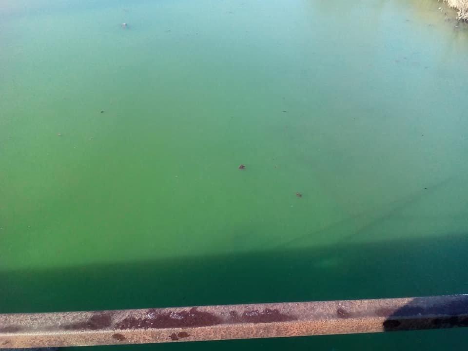 Херсонская ТЭЦ выбросила в реку окрашенный теплоноситель (фото), фото-2