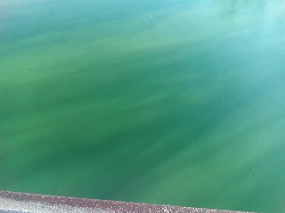 Херсонская ТЭЦ выбросила в реку окрашенный теплоноситель (фото), фото-3