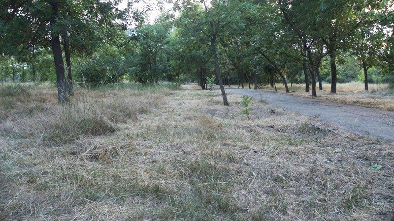 Более миллиона гривен обойдется Херсону проект ремонта систем полива парков, фото-1