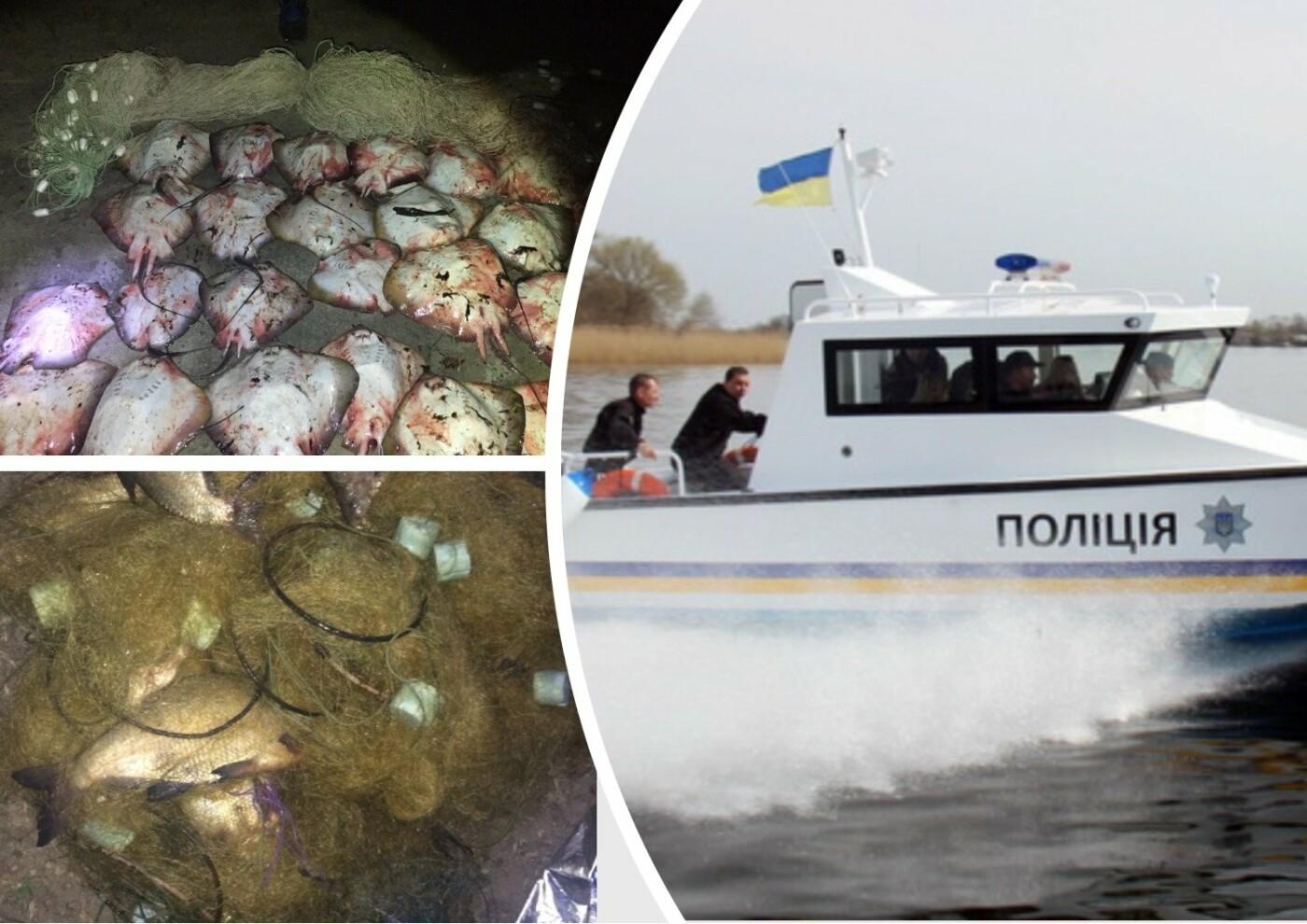 За підсумками операції «Нерест» поліцейські Херсонщини вилучили у браконьєрів понад 10 тонн риби, фото-1