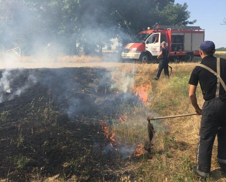 Вчора рятувальники 17 разів гасили суху рослинність, фото-1