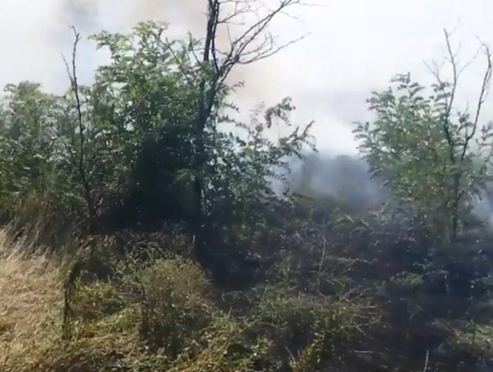На Херсонщині чергова пожежа, фото-1
