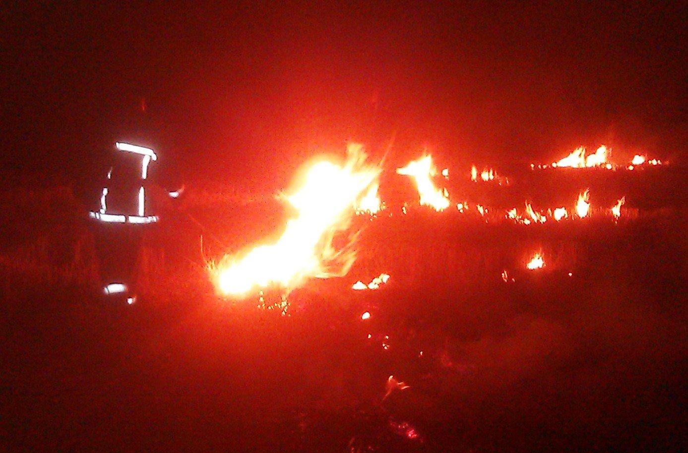 В смт Нижні Сірогози від стерні загорівся сухостій на присадибній ділянці, фото-1