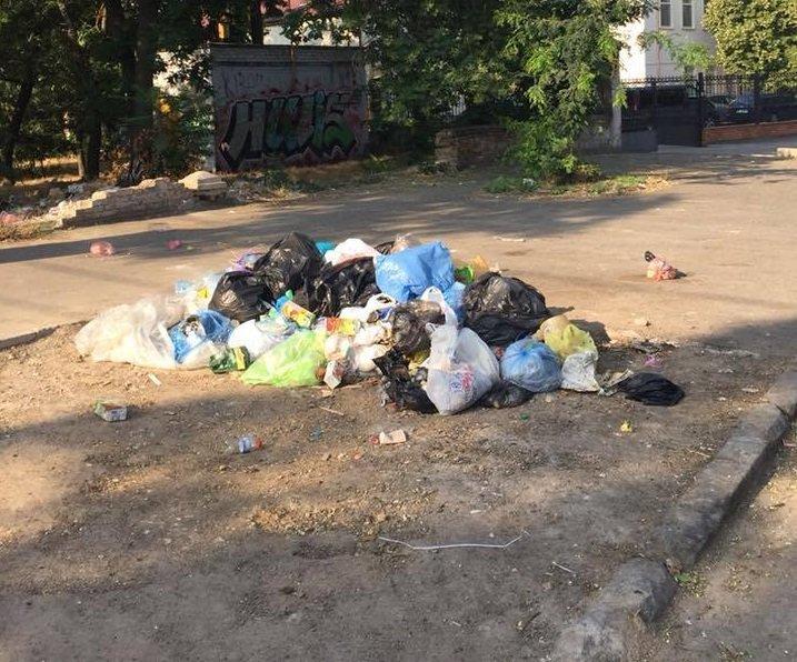 Горы мусора «оккупировали» улицы Херсона, фото-2