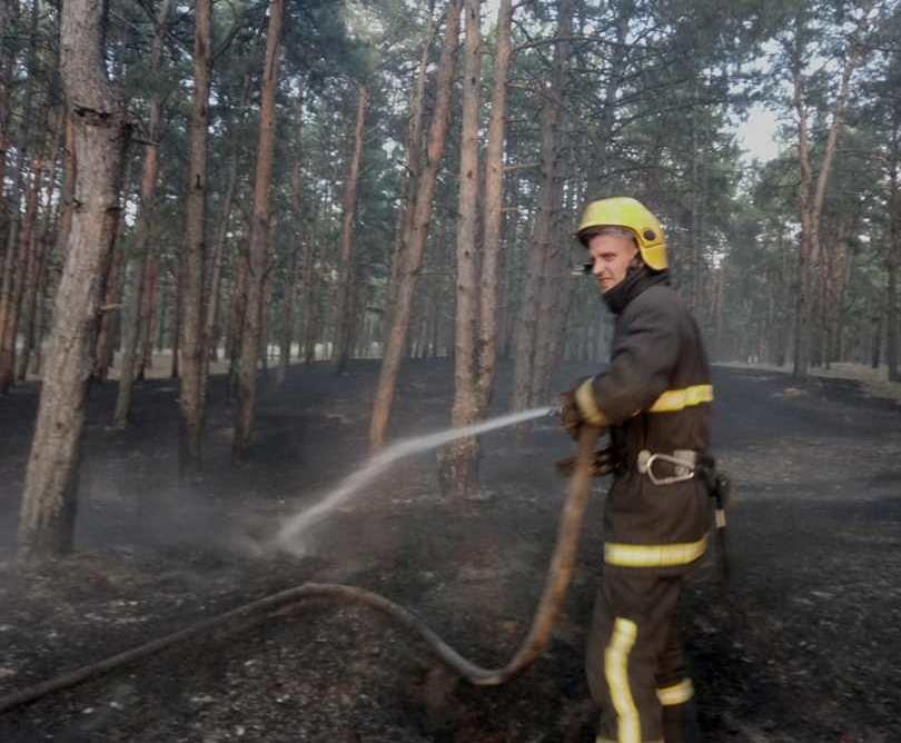 У Каховському районі ліквідовано лісову пожежу на площі 0,1 га, фото-1