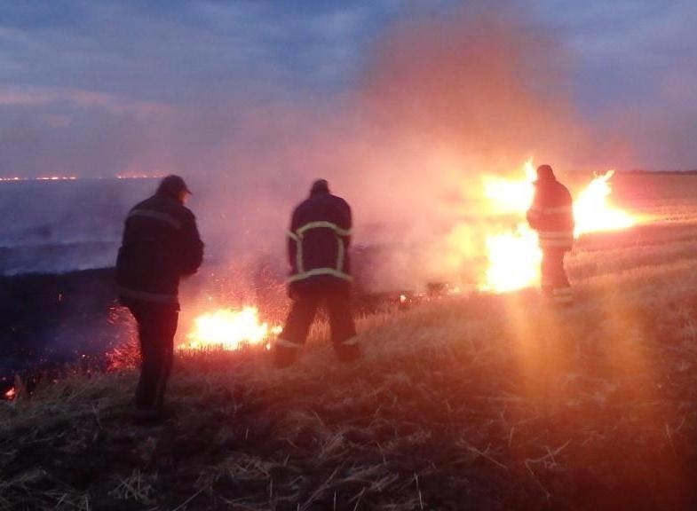 На Херсонщині пожежа на полі, фото-1