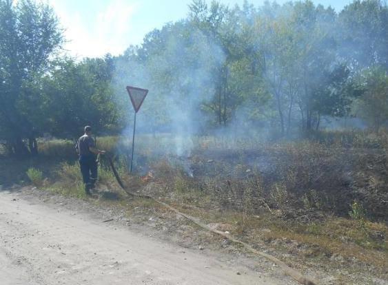 Минулої доби на території області зафіксовано 19 пожеж, фото-1