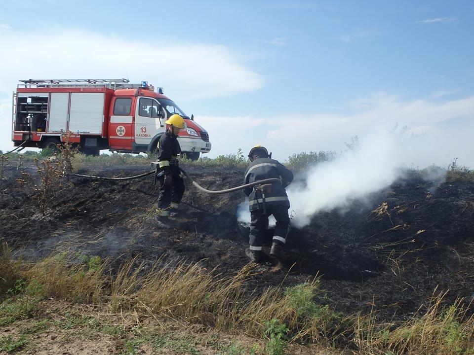 На Херсонщині знову палає сухостій, фото-1