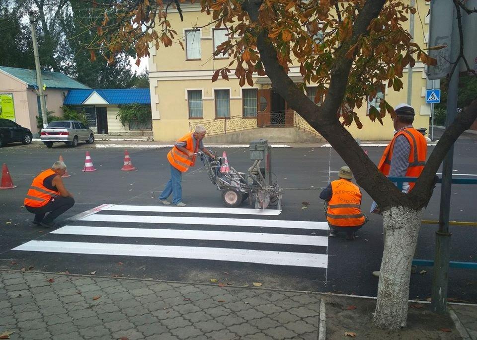Жители райцентра Херсонщины проанализировали работу дорожных служб , фото-1