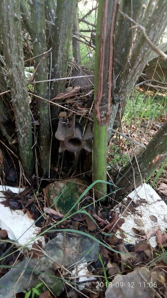 На Херсонщине нашли снаряд на территории школы (фото), фото-1
