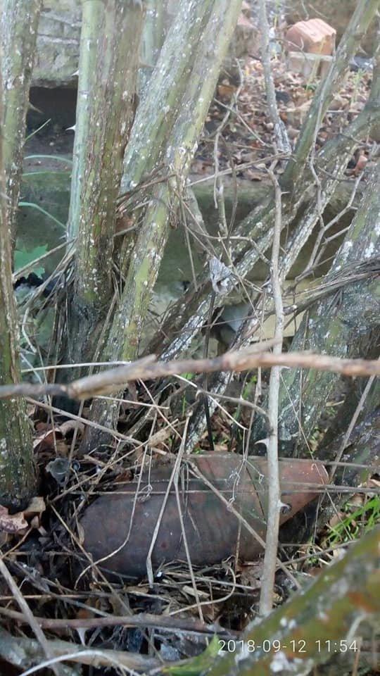 На Херсонщине нашли снаряд на территории школы (фото), фото-2